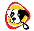 Városi kutyasuli – Sopron